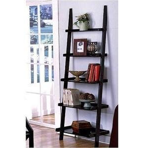 The Leaning Storage Ladder