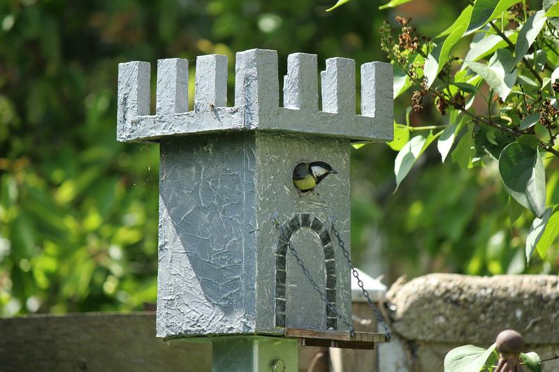 Different types of Bird Aviaries