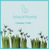 Blackthumb Decor
