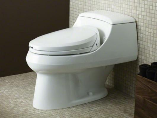 Kohler C3 174 200 Elongated Toilet Seat With Bidet Functionality